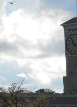 69 - the clocktower mistake